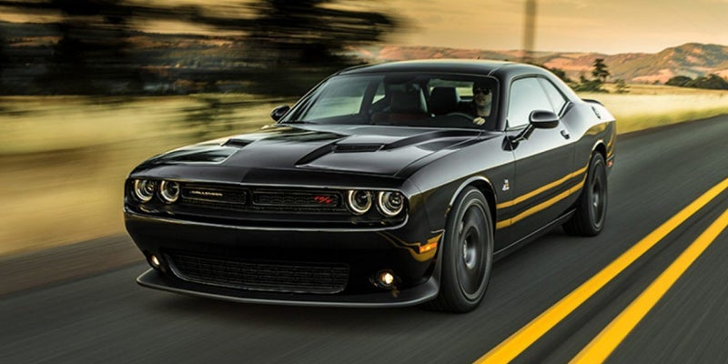 2019 Dodge Challenger Sxt Dodge Challenger Sxt In Seguin Tx